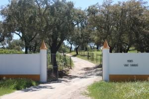 Entrada da Herdade Vale de cabras Portel Alentejo